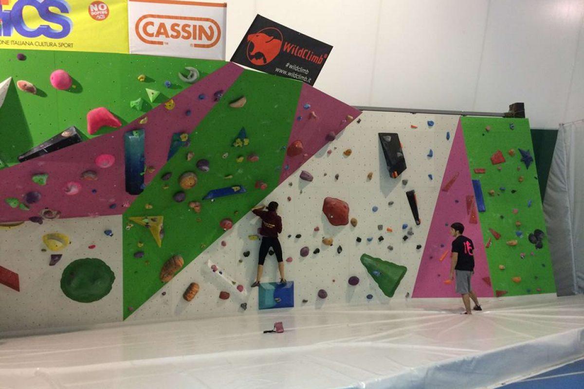 Parete Scalata Bambini : Arrampicata sportiva a modena metri di parete attrezzata aics
