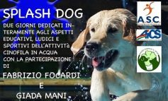 CINOFILIA, SPLASH DOG: CON I CANI IN PISCINA