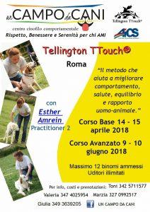 ROMA, TELLINGTON T-TOUCH: CORSO AL CENTRO CINOFILO COMPORTAMENTALE