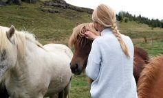 EQUITAZIONE e PET THERAPY, FORMAZIONE SPECIALIZZATA PER GLI INTERVENTI ASSISTITI CON GLI ANIMALI
